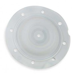 No 93111 Diaphragm, Tef